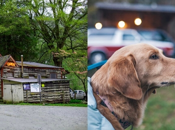 Betsey's Ole Country Store & Cabin Rental