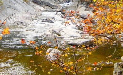 Visiting Wilson's Creek During the Fall